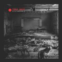 Disturbance - (LP - VÖ: 01.03.2019)