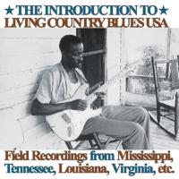 Introduction To Living Country Blues - (Doppel LP + MP3 Download)